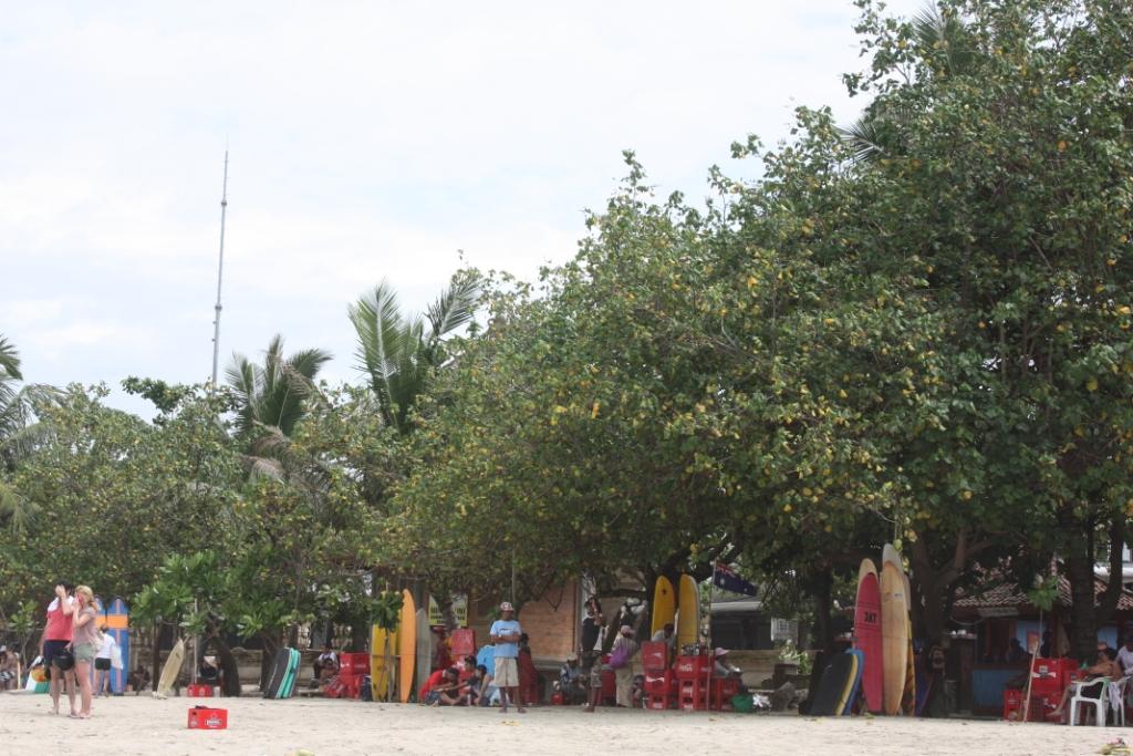 Серфинг в Куте