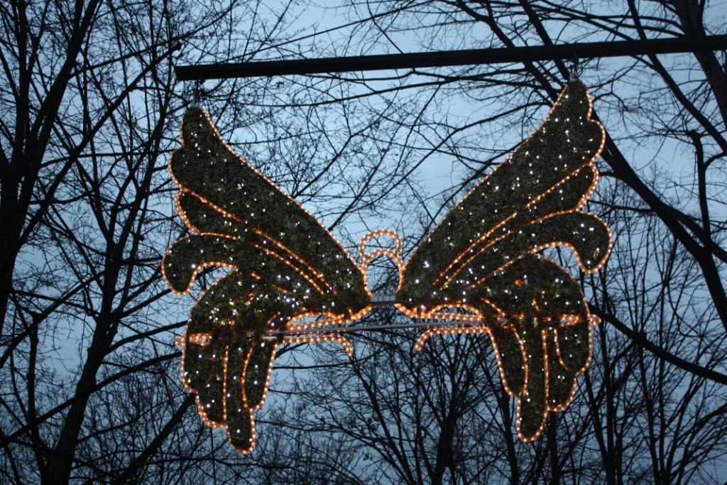 Рождественская вечерняя Вена