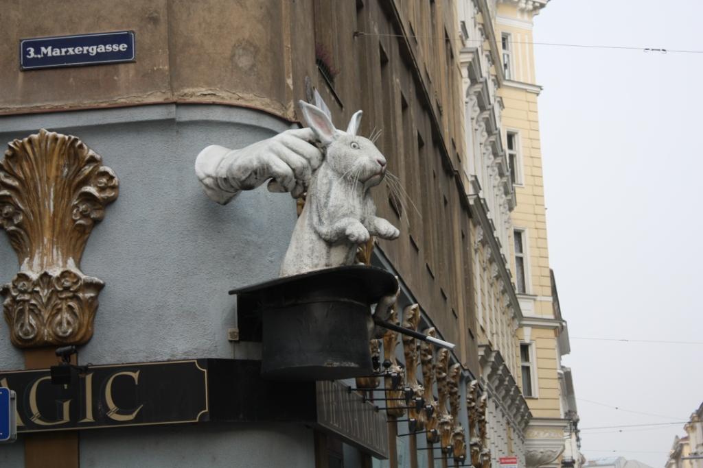 Кролик в Вене