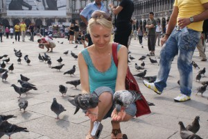 Голуби на Сан-Марко в Венеции