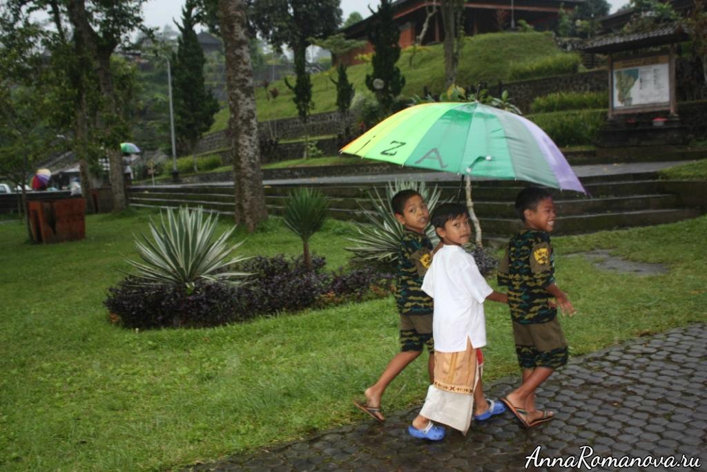 Тропический ливень на Бали