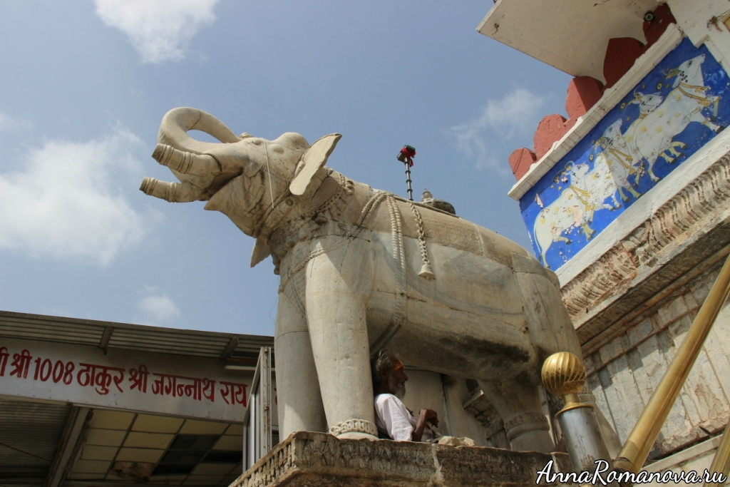 Слон в Удайпуре