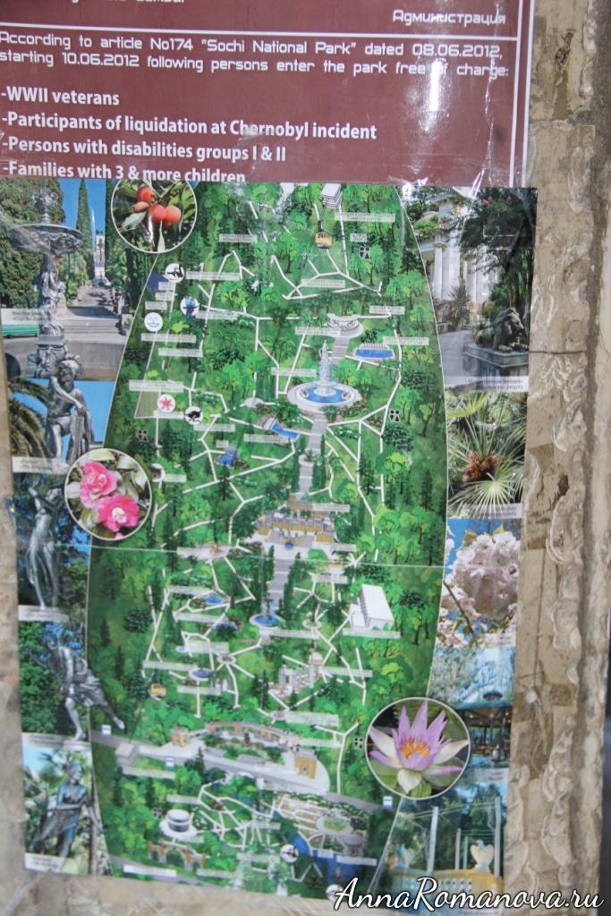 схема парка дендрарий в сочи