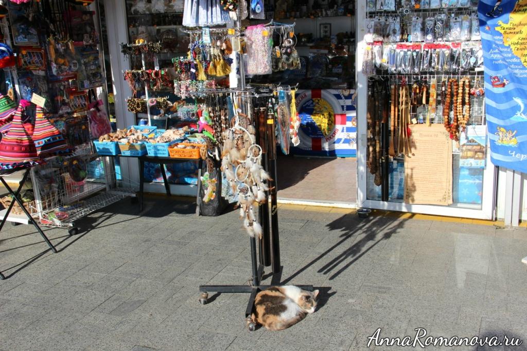 сувенирные магазины в сочи коты