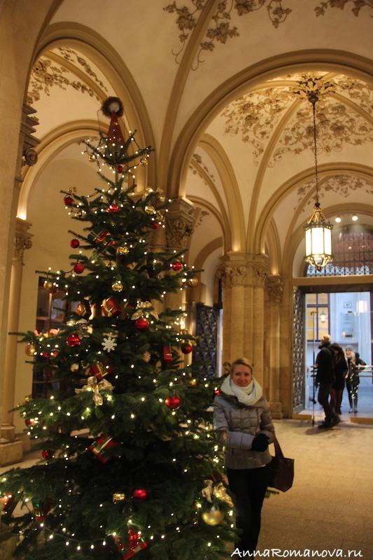 рождественская ёлка вена